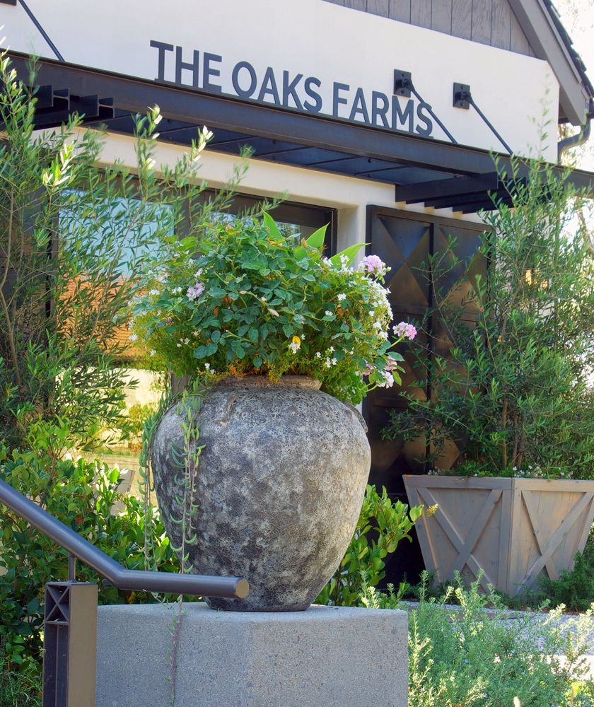 Oak Farms in Capistrano awarded
